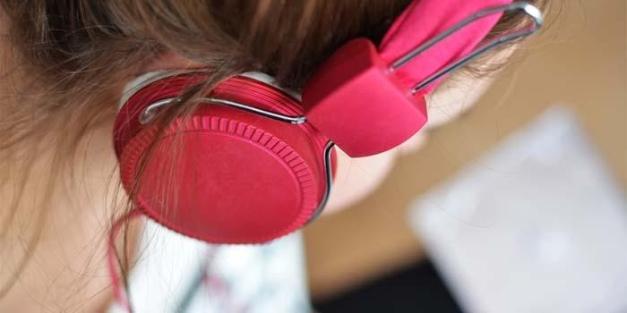 audio book nereden alınır nedir